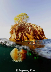 Black Rock and JellyFish by Jagwang Koo
