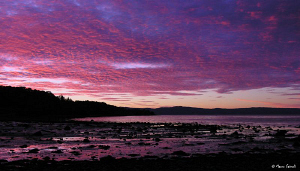 Pink sunset in Trondheim (Compact camera Nikon Coolpix 8400) by Marco Faimali