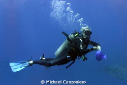 Capturing the Rogue Lionfish. With the apparent prolifer... by Michael Canzoniero