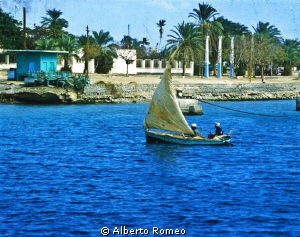 A little sailboat  in the harbour of Port Sudan in 1978. by Alberto Romeo