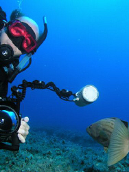 Hubby and a dusky grouper by Carol Cox