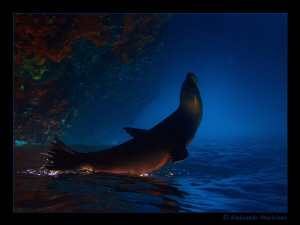 3...2...1...0...Start