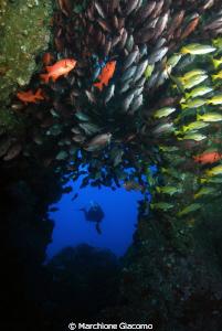 The Hole Coco island Nikon D200, 17-35 zoom nikon,twin ... by Marchione Giacomo