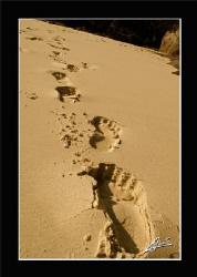 foot prints on the beach of island n.8 Similan National p... by Adriano Trapani