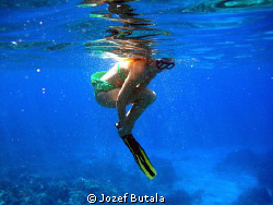 Preparing to Dive. by Jozef Butala
