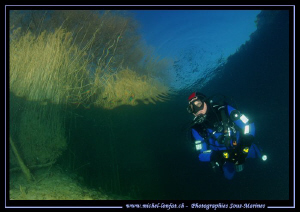 The clear waters of our small lakes. Que du bonheur... :O... by Michel Lonfat
