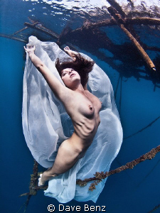 Underwater model shooting together with mermaid Nadine (u... by Dave Benz