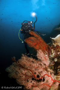 Videographer in Raja Ampat by Richard Goluch