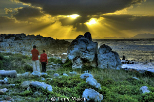 Looking out over False Bay by Tony Makin