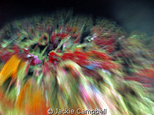 Bombs on the Umbria !!