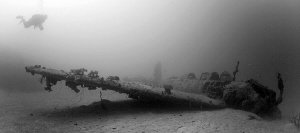 Jill Torpedo bomber, Truk Lagoon, Chuuk, Micronesia. by Jim Garland
