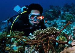 Nemo does not fail to amaze even a seasoned diver like my... by Bernard Maglana