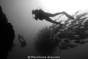 The twister Nikon D200, 17-34mmNikon ,twin strobo Coco ... by Marchione Giacomo
