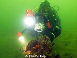 My budy Frans taking pictures of Cyclopterus lumpus. I wa... by John De Jong