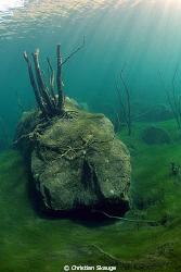 Lake Lygnstøylsvatnet, Norway. I 1908, a rockslide closed... by Christian Skauge
