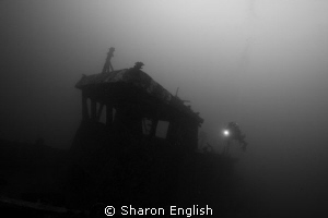 First attempts using a tripod underwater to allow longer ... by Sharon English