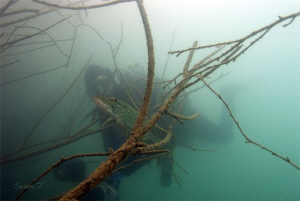 Low viz dive, yet a great dive! At the end pikes and 3 we... by Sven Tramaux