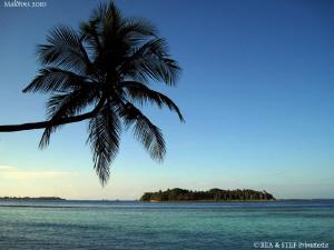 Maldives. Canon Ixus 980. by Bea & Stef Primatesta