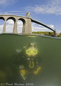 Under Menai bridge in plankton bloom, 1m vis. D3,16mm. by Derek Haslam