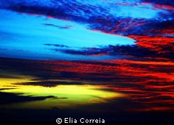 """""""Feuer Frei!"""" by Elia Correia"""