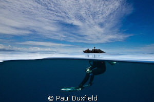 Shelly was looking for me as I had surfaced to one side o... by Paul Duxfield
