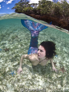 Oups...I found this mermaid during my snorkle-trip. But s... by Dave Benz