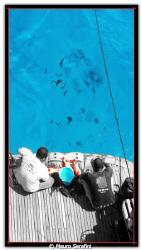 La pulitura del pesce by Mauro Serafini
