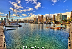 Late Afternoon at the Ala Wai Harbor in Waikiki by Rylan Stewart