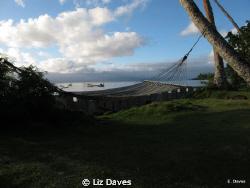 Time to say goobye to Fiji. by Liz Daves