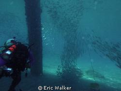 Commercial Pier in Deerfield Beach FL. by Eric Walker