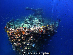 Bow of the Fujikawa Maru.