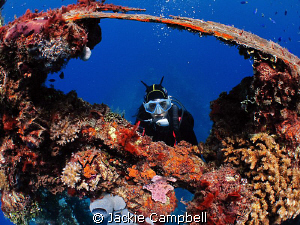 Kingpost of Fujikawa Maru. MWB, ixus 980 and fisheye len... by Jackie Campbell
