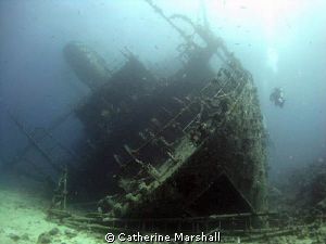 Giannis D wreck by Catherine Marshall