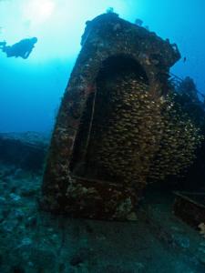 Glassfish on the Kuda Giri wreck. Canon G10, 12mm fisheye. by Bea & Stef Primatesta