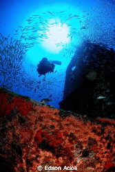 Diver and the wreck. Nikon D90, Tokina 10-17mm Lens and t... by Edson Acioli