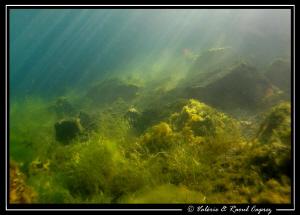9h30, Saturday morning, Geneva Lake ... a magic atmosphere ! by Raoul Caprez