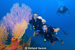 The boys go diving at Fan corner, Downbelow Dive Centre, ... by Richard Swann