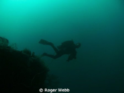 An algae bloom gave the water at a 100' the greenish cast... by Roger Webb