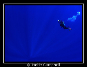 TO INFINITY AND BEYOND......  My Buzz lightyear dive bud... by Jackie Campbell