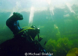 This recreational diver checks for the presence of boats ... by Michael Grebler
