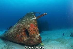 wreck dive C*58 ANAYA by Juan Cardona