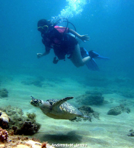 Turtle and girl diver by Andres L-M_larraz