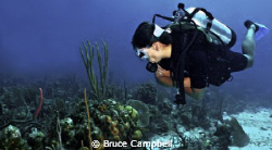 Lu was viewing all of the corals and sponges as I took th... by Bruce Campbell
