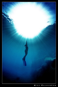 The Freediver CANON 40D, Ike Housing, Sigma 10-20mm lens... by Rico Besserdich