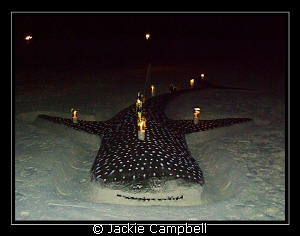 Now this is what I call a sand castle !! We had a bbq ni... by Jackie Campbell