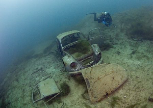 Underwater Beetle. D200 10.5mm. by Mark Thomas