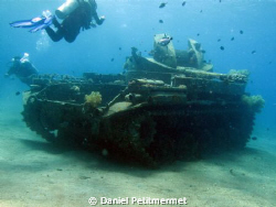 M42 Duster wreck . Easy dive with the children at around ... by Daniel Petitmermet