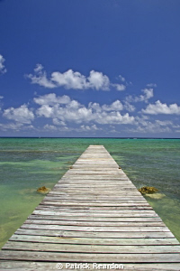 Conch Point.  Grand Cayman. by Patrick Reardon