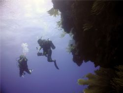 Divers in the blue, Wall, Puerto Plata, Dominican Republi... by Massa Paola