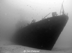 P29 Patrol boat in 36metres Taken with an Olympus 5000z... by Ian Palmer